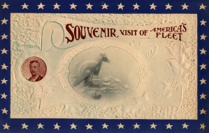 Souvenir Visit of America's Fleet