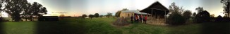 Panorama - Dalwood Courtyard
