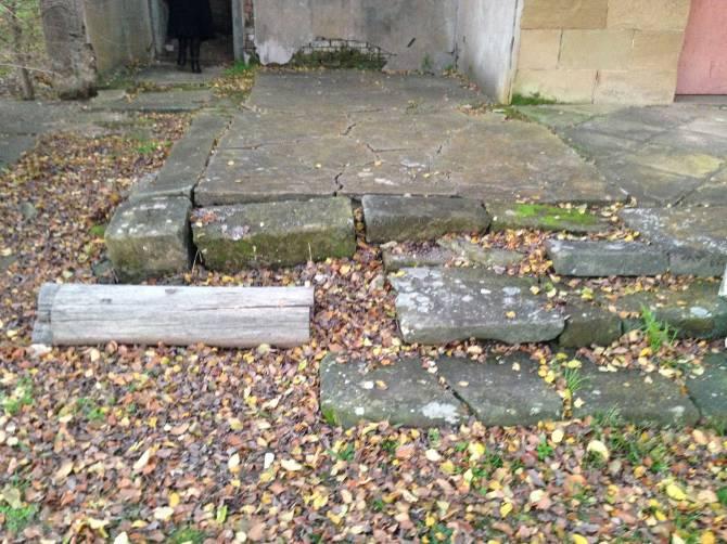 Dalwood Steps