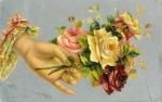 Postcard Hand holding flowers