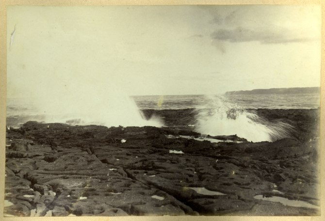 Closeup of ocean rock platform and crashing waves (Photograph by George Freeman)